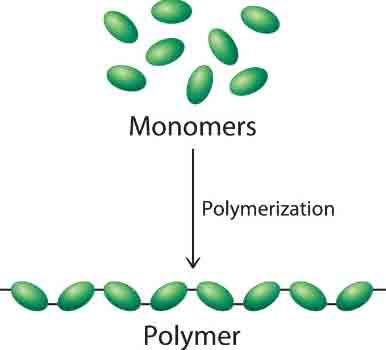 Polime là gì